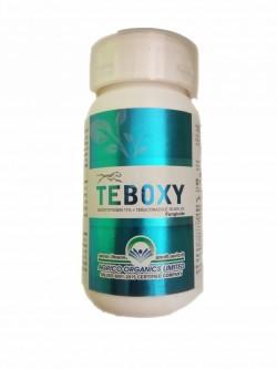 TEBOXY 250 ML